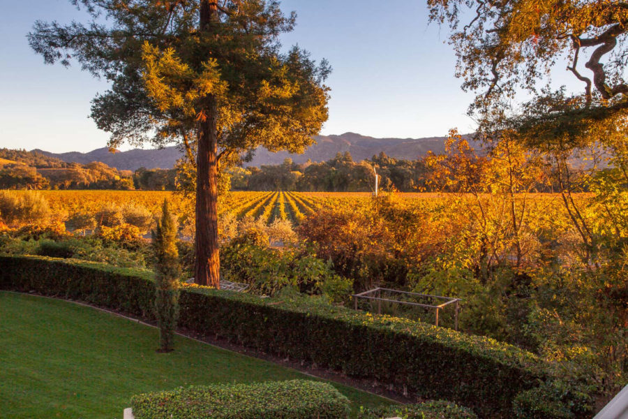 Private Residence – A Taste Of Champagne – In Napa